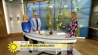 Allt om pollenallergi - Nyhetsmorgon (TV4)