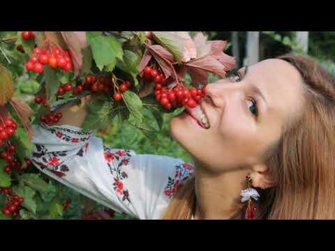 14 Ukrainian wedding songs ( 14 весільних пісень ) .