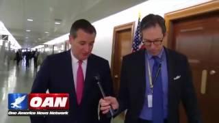 Sen. Ted Cruz on Rex Tillerson & Gen. Mattis Confirmation Hearings