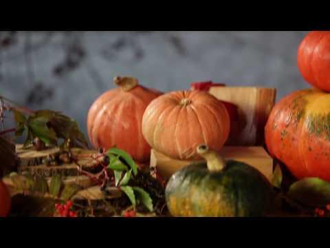 Еда живая и мёртвая: Тыква