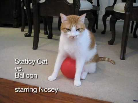 Staticy Cat vs. Balloon