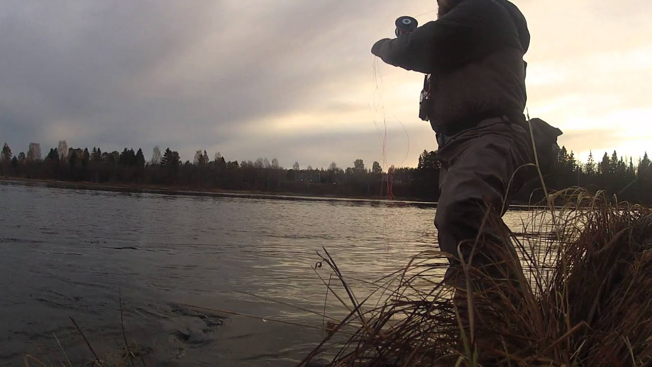 Skagit cast with OPST Commando  amp  Echo Glass Spey