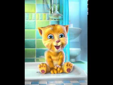 Marathi Funny Talking Ginger Cat