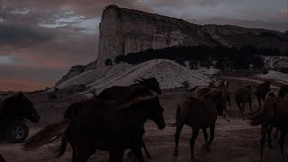 Old Town Road || Western Riding Music Video