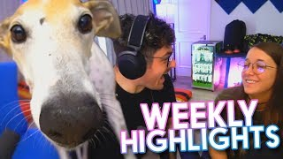 JennaJulien Twitch Highlights #22
