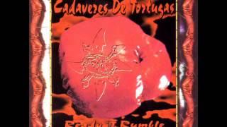 Watch Cadaveres De Tortugas Lie Is Its Name video