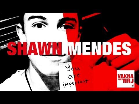 [Interview] Shawn Mendes - NRJ