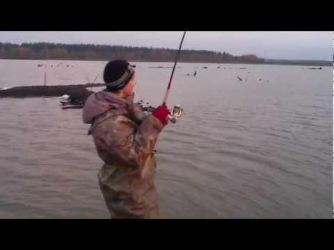рыбалка на озере мярат карелия