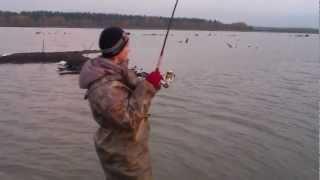 рыбалка в раково 2016 видео