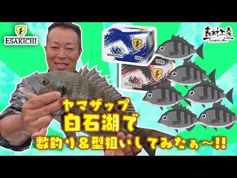 【おしえて!えさきちさん】ヤマザップ 白石湖で数釣り&型狙いしてみた!