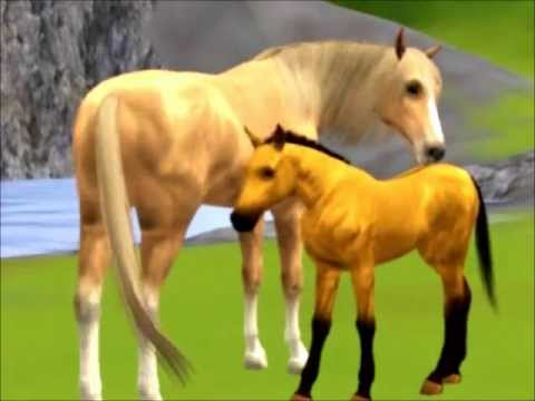Sims 3 Pets: Spirit; Stallion of the Cimarron