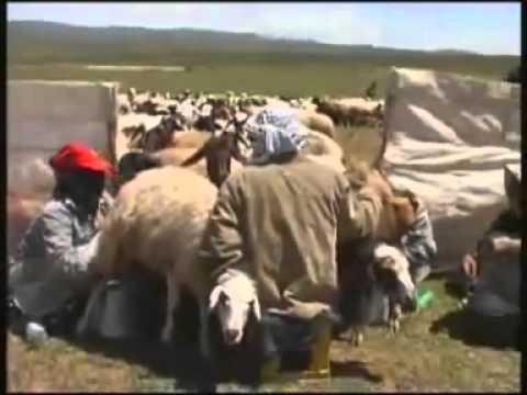 Dengbej Xalide u Mıhemede Serhede WERİ YEMAN.flv