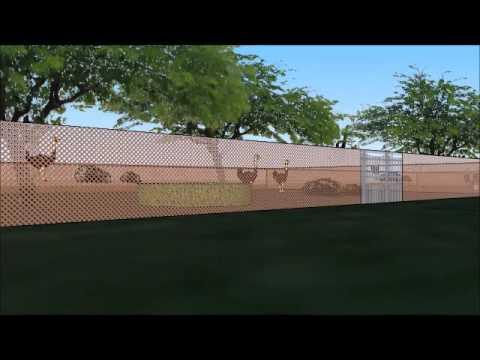 granja avestruz joan vicens mexico