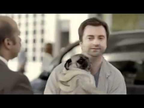 Honden en benzine (Citroën)