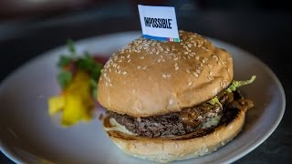 Adam Savage Cooks the Impossible Burger with Traci Des Jardins!