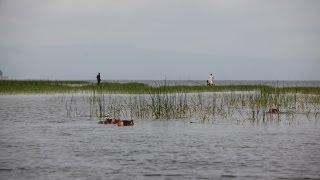 Awassa Lake in Ethiopia