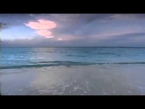 Чичерина - Океаны