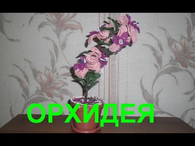 Бисероплетение для начинающих (Орхидея 1 часть) Мастер-класс