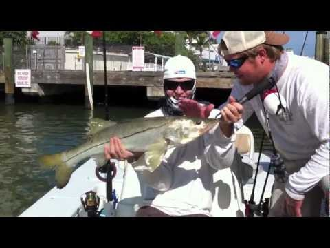 Big Snook Fishing - Buddy's Snookzilla - Fort Myers Beach HD