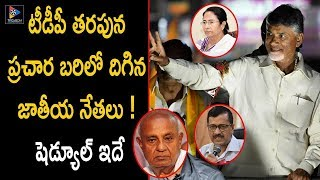 National Leaders Election Campaign For TDP Party | AP Political Updates | TFC News