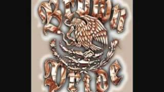 download lagu Spm-mexican Radio.mp3 gratis