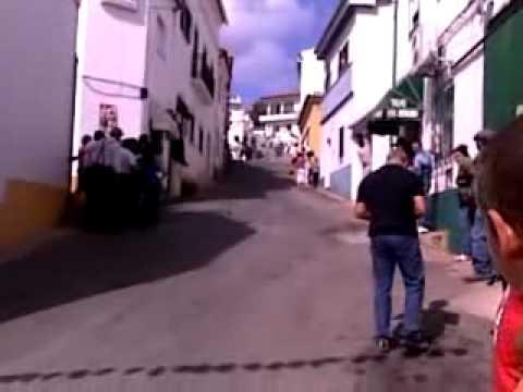 Carrinhos de rolamentos em Santana da Serra.