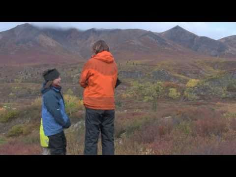 Dempster Highway and Tombstone Territorial Park (Part 1: Heading North)