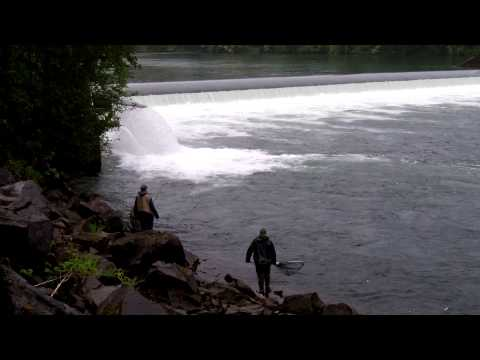 Cowlitz River Washington May 29, 2013