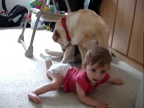 Baby Leyla and our Labrador dog Gia