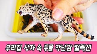 한국어ㅣ우리집 상자 속 동물 장난감 컬렉션, 동물 이름 맞추기, 컬렉타 피규어ㅣ꼬꼬스토이