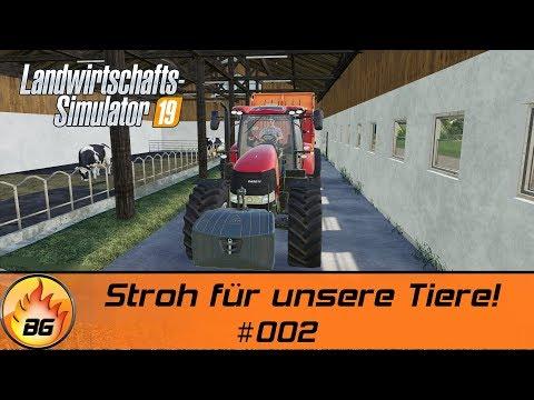 LS19 - BG FARM #002 | Stroh für unsere Tiere! | FS19 | Let's Play [HD]