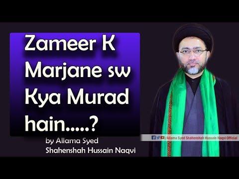Zameer k Marjane sw kya Murad hain by Allama Syed Shahenshah Hussain Naqvi