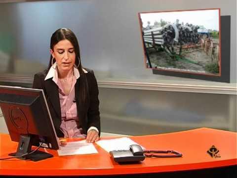 Notizie del Giorno Alessandria 9 Luglio  2011
