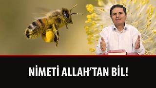Dr. Ahmet ÇOLAK - Nimeti Allah'tan Bil!