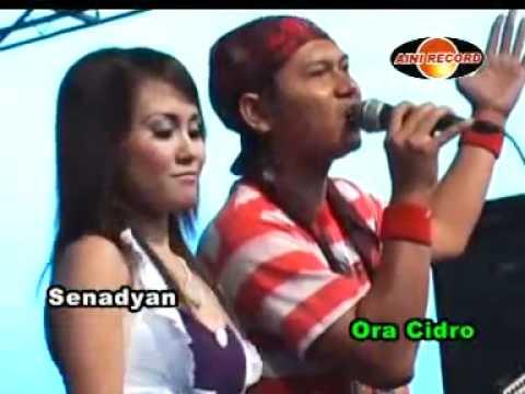 Sagita Koplo 2012 ^ ^ Tak Tunggu Balimu Budi Feat Eny Sagita video