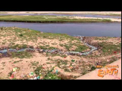 Polluted River Yamuna