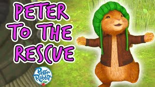 Peter Rabbit - Peter to the Rescue