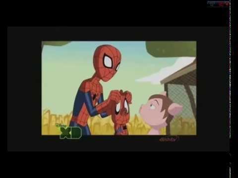 Ultimate Spider-Man Season 3 Spidey meets Spider-Ham