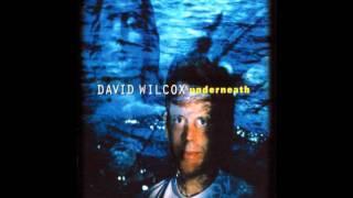 Vídeo 11 de David Wilcox