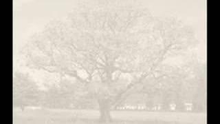 Watch Keane Walnut Tree video