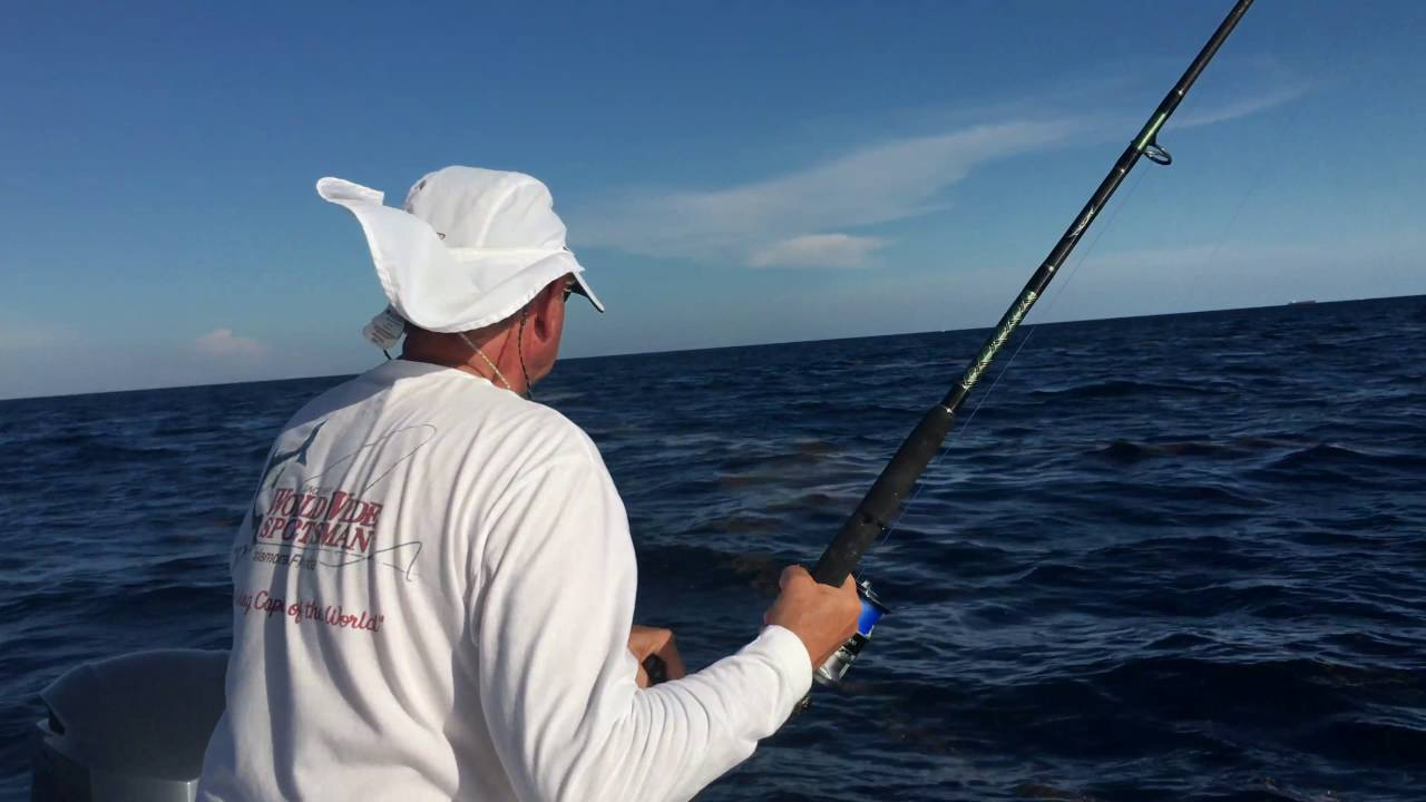Mahi fishing in fort lauderdale fishing focus for Fishing fort lauderdale