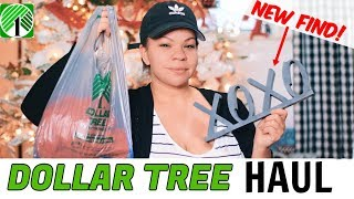 DOLLAR TREE HAUL NEW FIND!!! What's New At the Dollar Store?! Hauler-ma's Day 4