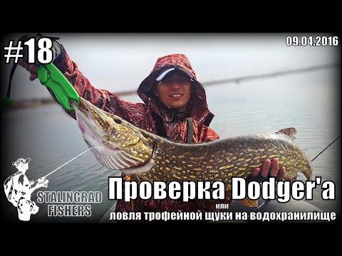 Проверка Dodger'а или ловля трофейной щуки на водохранилище - 09.04.2016