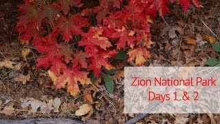 Zion National Park 2016: Days 1 & 2