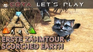 ARK SCORCHED EARTH • Die erste Zähmtour • ARK Deutsch • ARK Survival Evolved German
