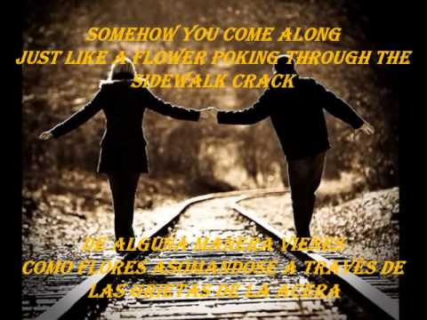 Uncle Kracker (Smile)  - English and Spanish lyrics