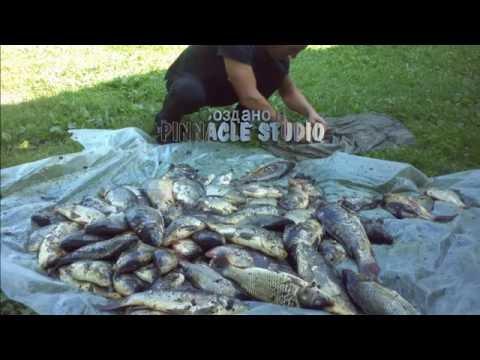 брынь рыбная ловля  2015 цена