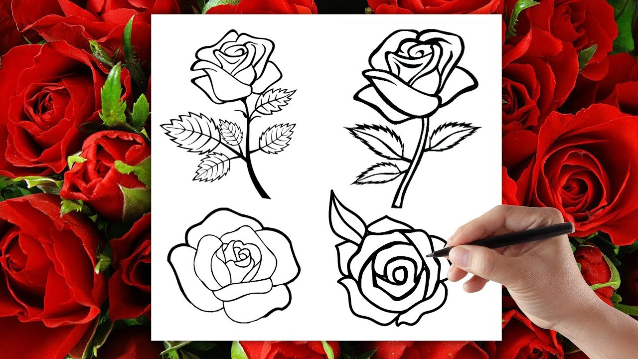 Как нарисовать розу своими руками поэтапно 66
