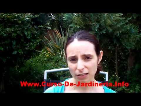Curso de jardineria como hacer un jardin paso a paso for Curso de jardineria