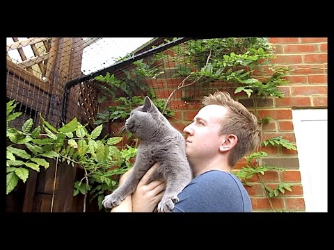 FINISHING OUR CAT PROOF GARDEN! | CHRIS & EVE